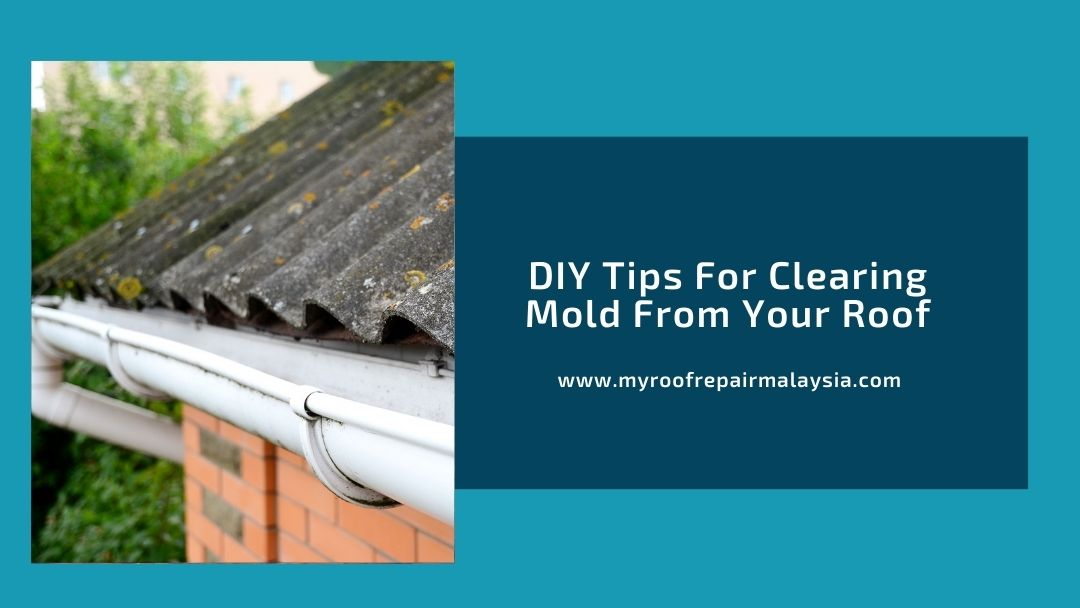 DIY Tips For Clearing Mold From Your Roof